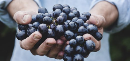 2232455-blueberries-650-1464722407