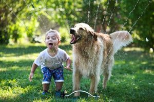 6667810-kids-with-dogs-332__700-650-d38830f1ea-1473945238