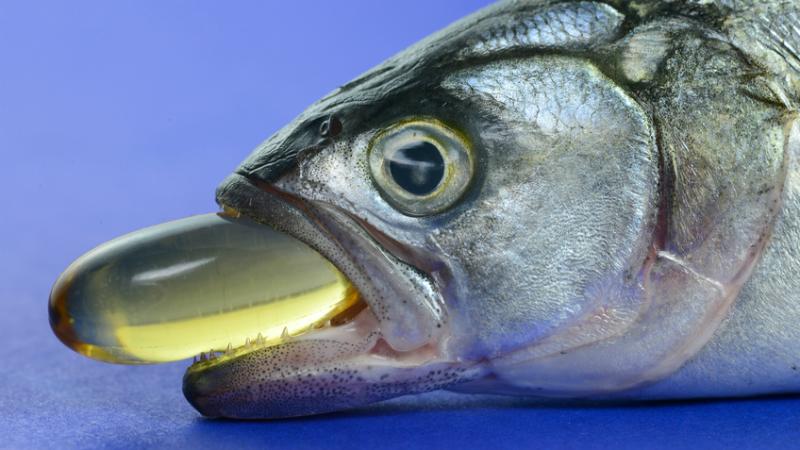 ეს 7 მიზეზი საკმარისია, რომ თევზის ქონის ტაბლეტები მთელი გულით შეიყვაროთ.