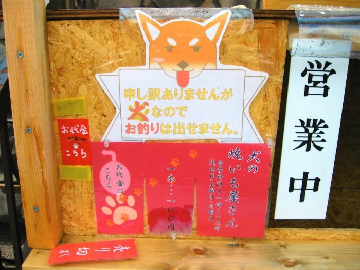 იაპონიაში ამ შემწვარი კარტოფილის მაღაზიის მმართველი შიბას ჯიშის ლამაზი ცუგაა