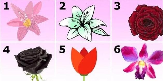 შეარჩიეთ ყველაზე ლამაზი ყვავილი და ჩვენ მოგიყვებით თქვენს ხასიათზე 100%იანი სიზუსტით