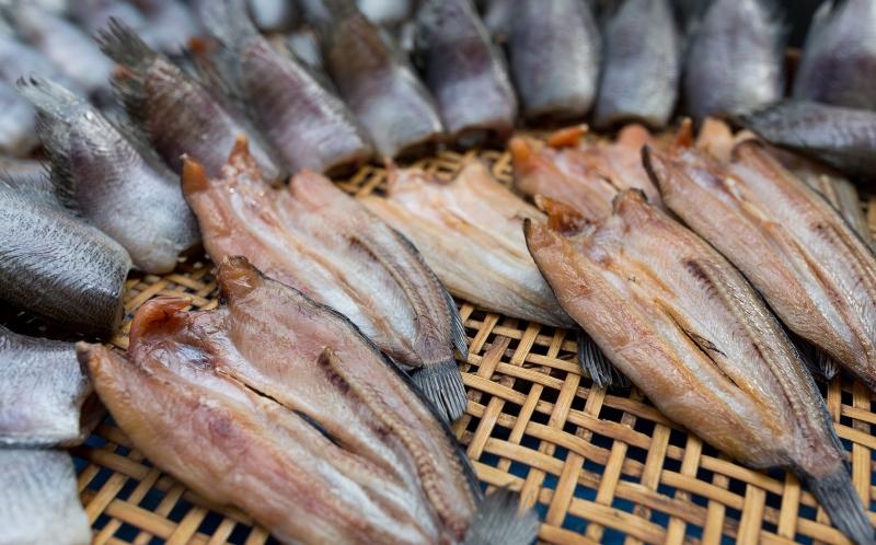 რომელი თევზი უნდა გამოვიყენოთ დიდი სიფრთხილით