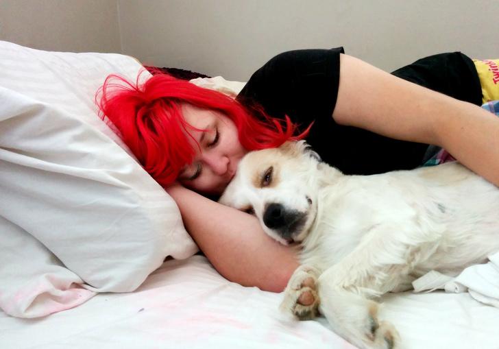 კვლევის მიხედვით, ზოგ ადამიანს თავისი ცხოველი უფრო მეტად უყვარს, ვიდრე სხვა ადამიანები