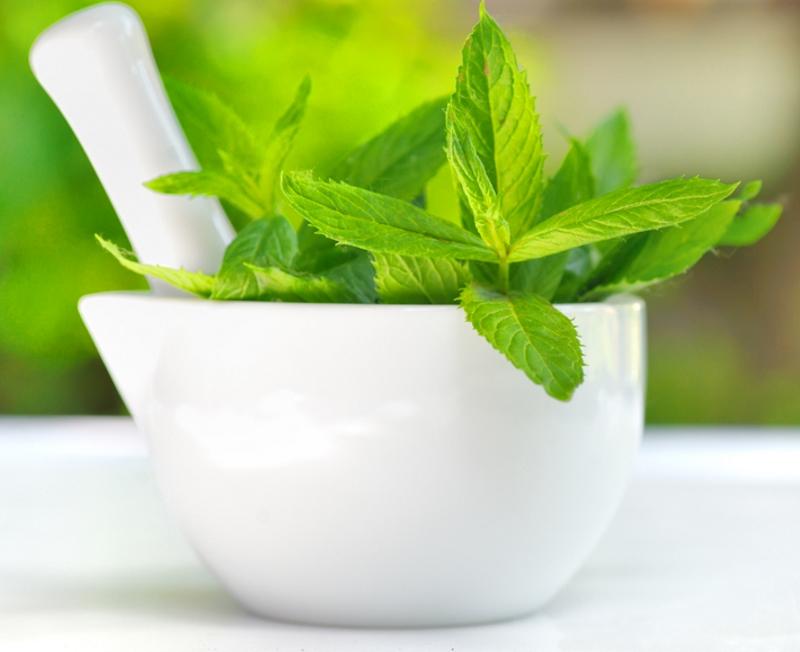 ამ ინფორმაციას რომ წაიკითხავთ, ყოველდღე დალევთ პიტნის ჩაის თაფლით.