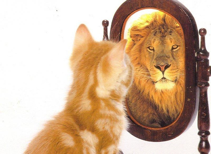 თქვენი ჯდომის მანერა ბევრს იტყვის თქვენს ჭკუასა და ხასიათზე