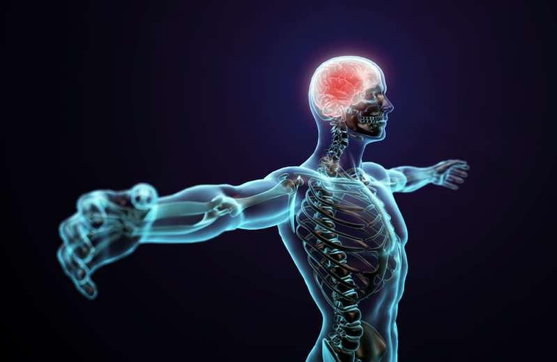 ოპტიკური ტესტი ტვინის შესამოწმებლად: შეგიძლიათ მიხვდეთ რა არ არის წესრიგში ფოტოზე?
